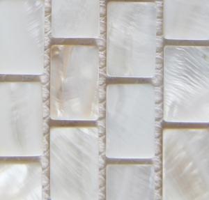 China Handmade Beautiful Sea shell Wall Mosaic Freshwater Sea Shell Mosaic Pattern 10x20mm wholesale