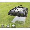 China plastic tank fish fauna box wholesale