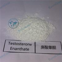 China Testosterone enanthate raw powder CAS 315-37-7 for bodybuilding wholesale