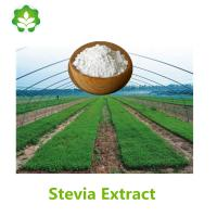 China stevia dry leaves extract powder rebaudioside a wholesale