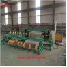 China 4m Full Automatic Double Wire Feeding Diamond Wire Mesh Fence Making Machine wholesale