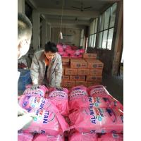 China 1kg 2kg good quality washing powder/ high foam famous detergent powder with cheap price wholesale
