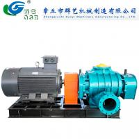 China Special Gas/Chemical Gas/Natural Gas Roots Blower wholesale
