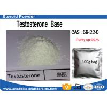 China Safest Testosterone Steroid Testosterone Base Powder / Test No Ester 58-22-0 wholesale