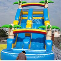 China Childrens Inflatable Bouncer Slide 1000D PVC Tarpaulin Inflatable Water Slide Park wholesale