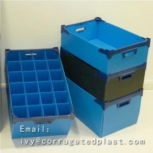 China Corrugated Plastic Box/Corflute Box/ Mail Tray --- China Supplier wholesale