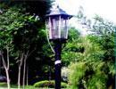 China Solar Insecticidal Lamp 03 wholesale