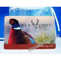 China plastic card, pvc membership card wholesale