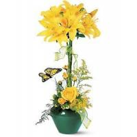 China Best Sellers Lily Topiary wholesale
