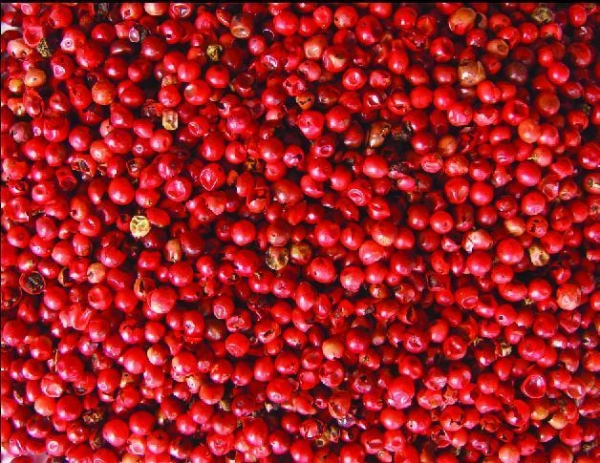 Quality Star Aniseeds Product Name:Red pepper for sale