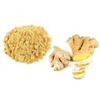 China Organic Whole Ginger Root Extract Powder wholesale