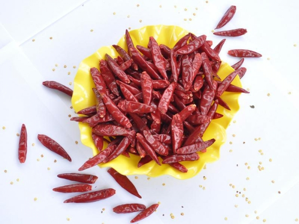 Quality Dried Chili Series  Chaotian Chili for sale
