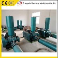 China DSR250 China Water treatment Roots Blowers Manufacturer wholesale