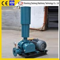 China DSR300AG High Pressure Industry Aeration Roots Blower wholesale