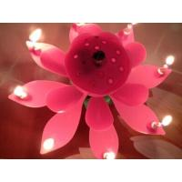 China Candle Sparking Lotus Music Birthday Candle wholesale