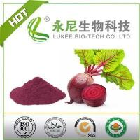 China Red Beet Root Powder Food Grade for Functional Products wholesale
