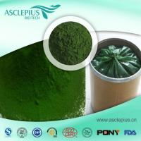 China Spirulina Extract Powder,spirulina Protein Supplier Wholesale wholesale