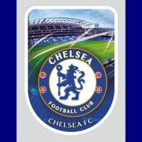 Buy cheap Chelsea FC Universal Skin / Sticker - 3D - Large from wholesalers