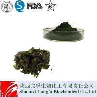 China Pure Spirulina Powder/Tablets,Organic wholesale