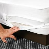 China Bed Bug Proof Box Spring Encasement [FULL size] on sale