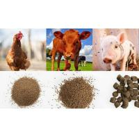 China blog Poultry, chicken, cattle, fish feed machine on sale