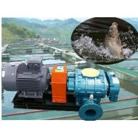 China Oxygen generating roots blower compressor for fish pond wholesale