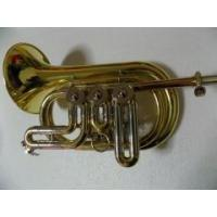 China Bb Rotary valve Cornet with Hard case Wind Musical instruments Factory Supply OEM Wholesale on sale