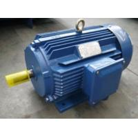 Buy cheap YE3-80~355 Series High Efficiency Three Phase Asynchronous Motor from wholesalers