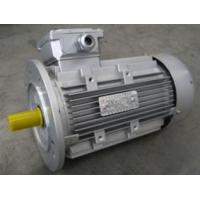 Buy cheap MS63~160 Series Aluminum Frame Three Phase Asynchronous Motor from wholesalers