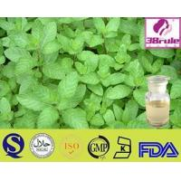China GMP Factory For Eucalyptus Oil wholesale