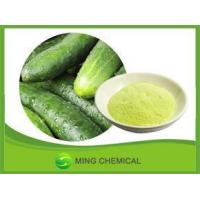 China Natural Excellent quality cucumber powder wholesale