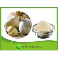 Chinese grade Eco-Friendly good solubility in water garlic powder for seasoning