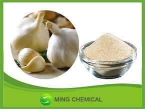 Quality Chinese grade Eco-Friendly good solubility in water garlic powder for seasoning for sale