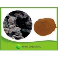 China Contact Now High purity Agaric Powder/Black Fungus Powder wholesale