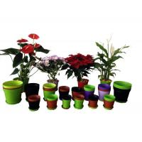 China Flower Cup Line wholesale