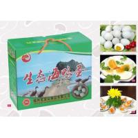 China Ecological sea duck eggs wholesale