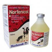 China Norfenicol 300 mg/ml Solution for Injection for Cattle and Swine wholesale