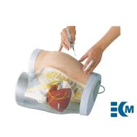 China Puncture injection model Buttocks Intramuscular Injection & Contrastive Model on sale