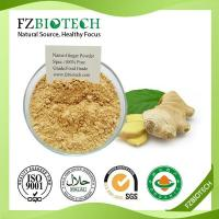 China Ginger Powder wholesale