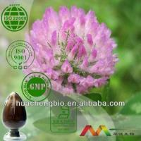 China Natural Red Clover Extract wholesale