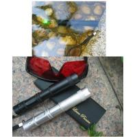 China High power water-proof green laser pointer(portable) on sale