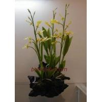 China CLAY FLOWERS ORCHID (Oncidium) wholesale