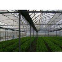 Buy cheap Double Arch Double Film from wholesalers