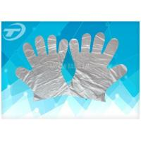 Disposable Glove Disposable PE Glove