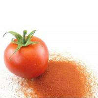 China Tomato Products Spray Dried Tomato Powder wholesale