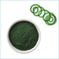 China Spirulina Powder wholesale